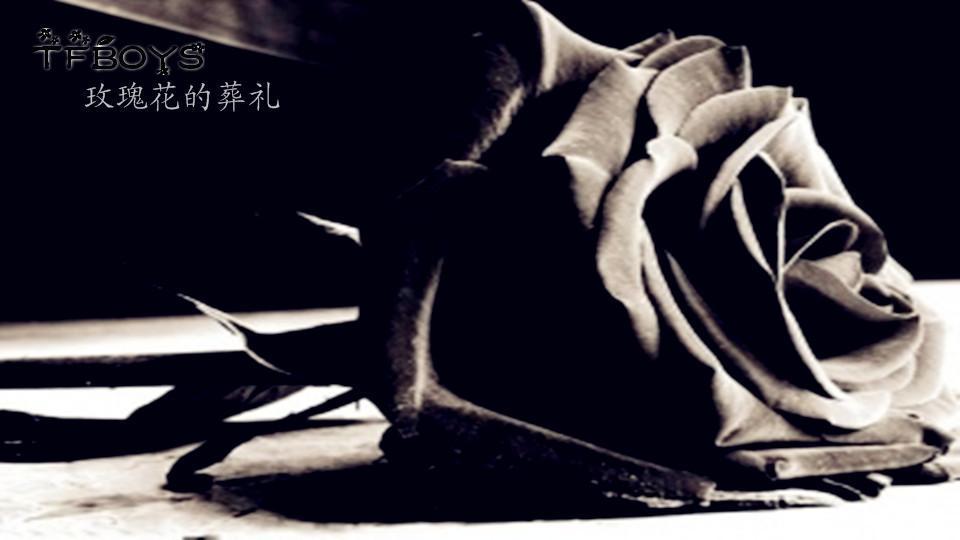 【tfboys】玫瑰花的葬礼