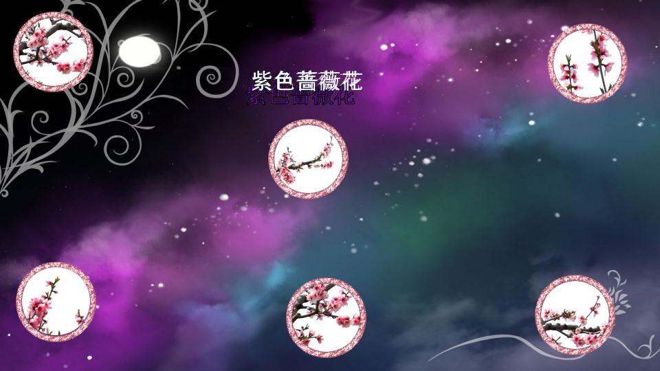 紫色蔷薇花 - 橙光游戏